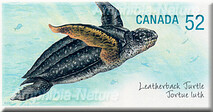 timbre postal tortue luth